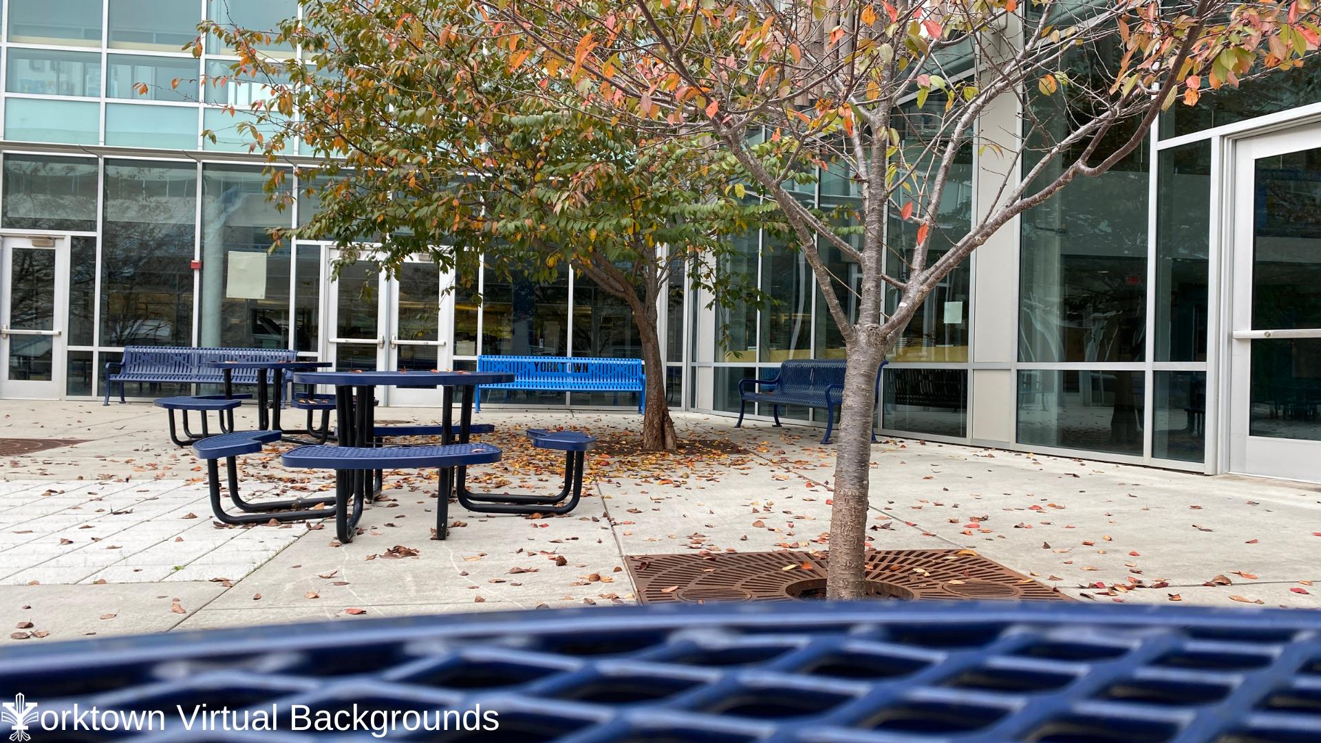 YHS Teams Background Courtyard 2